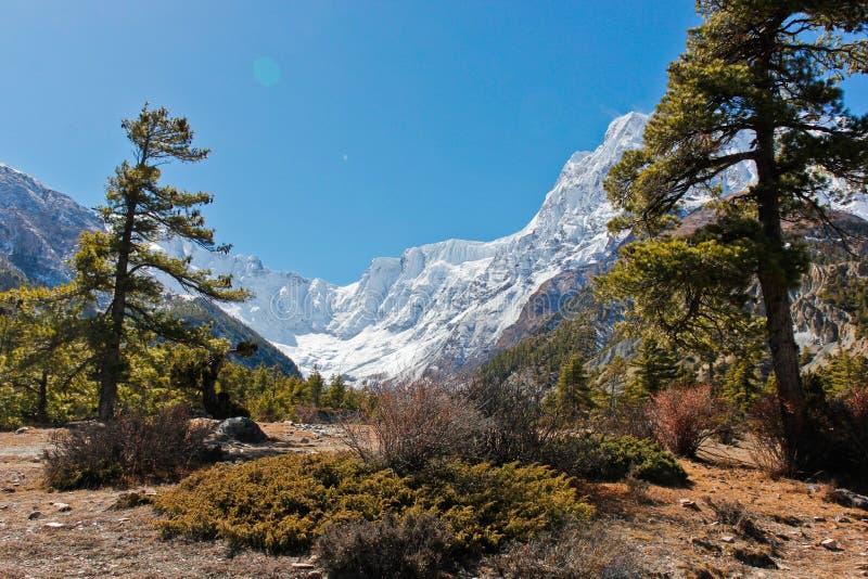 Paisagem bonita da montanha em Nepal fotos de stock royalty free