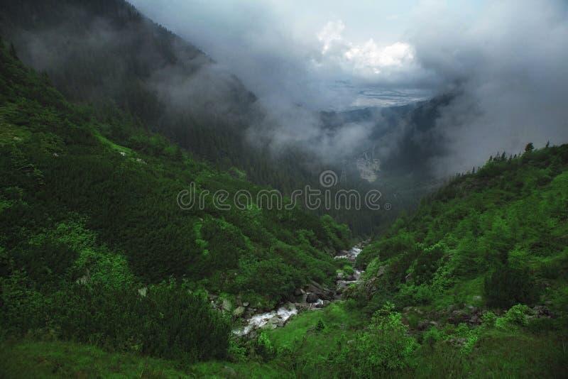 Paisagem bonita da montanha em Transfagarasan romania Cachoeira imagens de stock