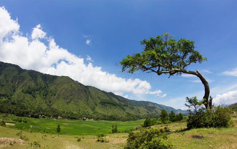 Paisagem bonita da montanha, ilha de Samosir, lago Toba, Sumatra norte, Indonésia foto de stock