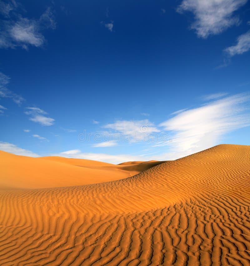 Paisagem do deserto da noite imagem de stock royalty free