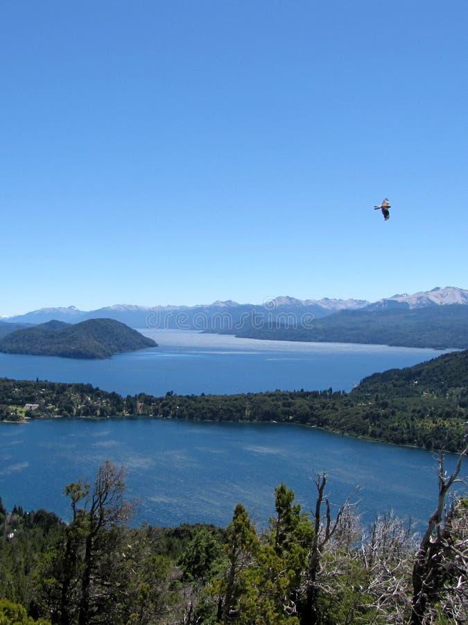 Paisagem bonita das montanhas, dos lagos, das árvores e de um pássaro em Piedra del Aguila, Argentina imagem de stock royalty free