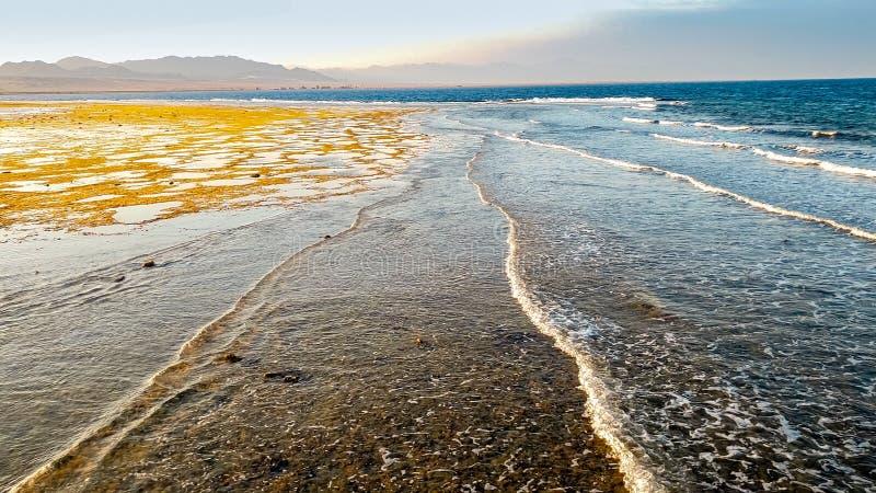 Paisagem bonita das ondas de oceano grandes que rolam nas ondas do mar da costa que travam sobre o recife de corais e as rochas imagem de stock royalty free