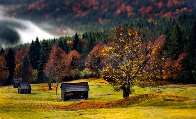 Paisagem bonita de Romênia, outono em Bucovina com casas do pastor fotografia de stock