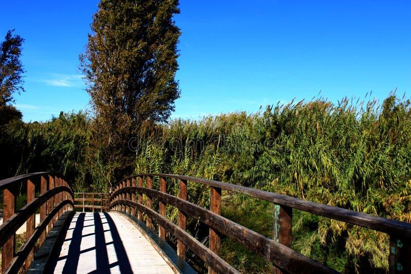 Paisagem bonita de uma ponte fotografia de stock royalty free
