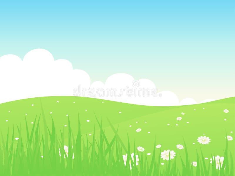 Paisagem bonita do campo do verde do verão. ilustração royalty free