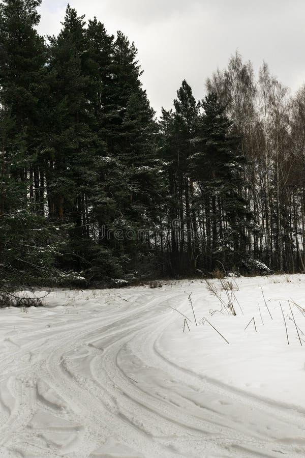 paisagem bonita do inverno com a floresta, a árvore nevado do inverno e a estrada da geada fotografia de stock royalty free
