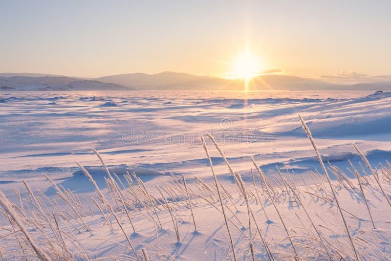 Paisagem bonita do inverno no fiorde foto de stock