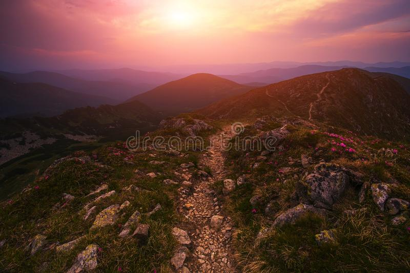 Paisagem bonita do nascer do sol de Carpathians do verão fotografia de stock royalty free