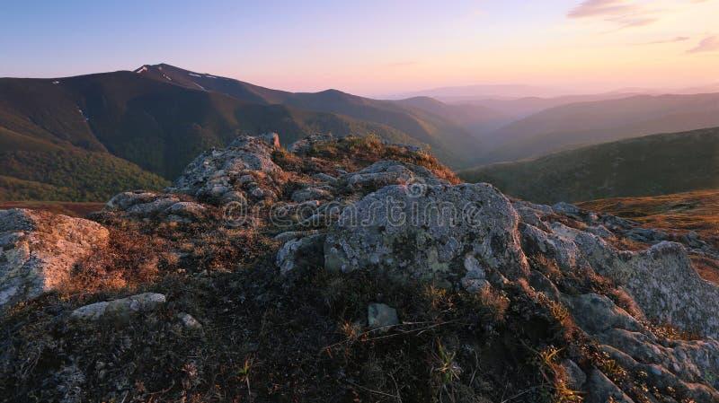 Paisagem bonita do nascer do sol de Carpathians do verão foto de stock