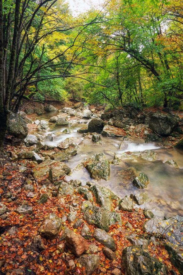 Paisagem bonita do outono com rio da montanha imagens de stock