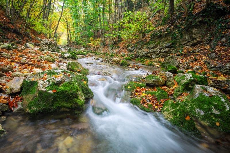 Paisagem bonita do outono com rio da montanha, pedras imagens de stock