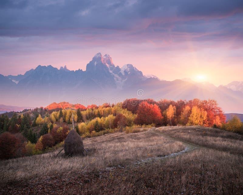 Paisagem bonita do outono nas montanhas com o sol de ajuste imagem de stock