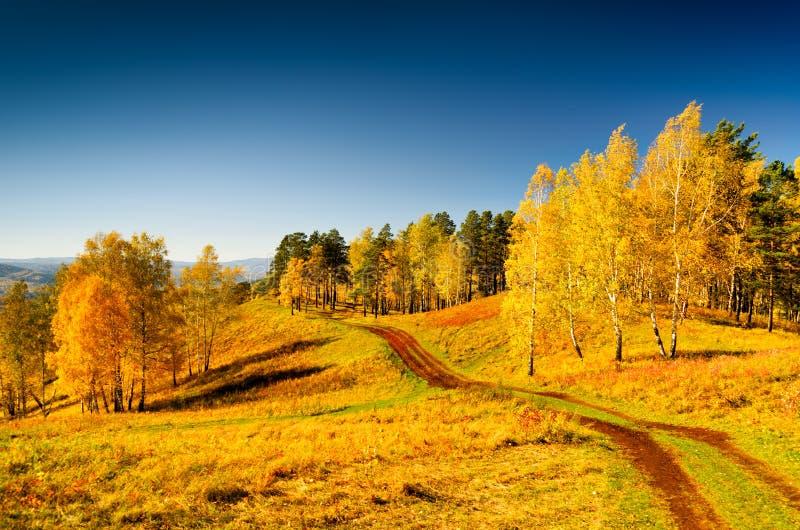 Paisagem bonita do outono Por do sol no parque fotografia de stock royalty free