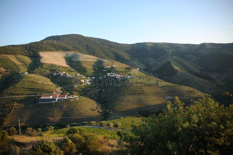 Paisagem bonita do país de Alto Douro, Portugal imagens de stock
