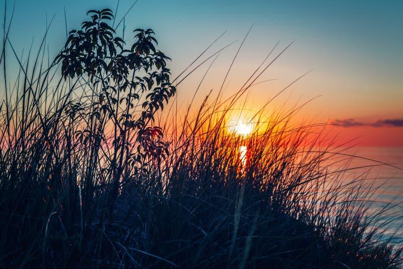 Paisagem bonita do por do sol da noite no canadense Ontário o Lago Huron no parque do Pinery fotos de stock