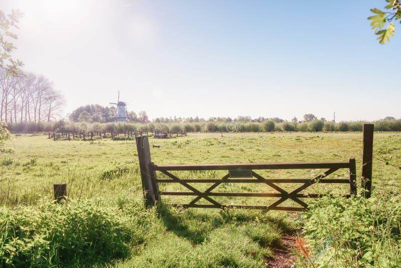A paisagem bonita do rio do rio Linge com o moinho de vento De Vlinder no fundo fotografia de stock royalty free