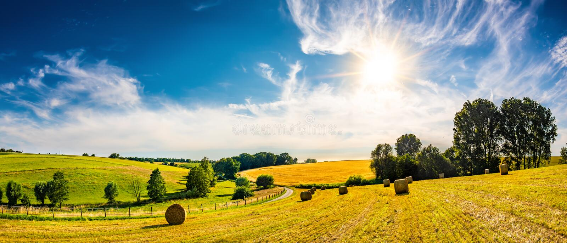 Paisagem bonita do verão com sol brilhante fotografia de stock