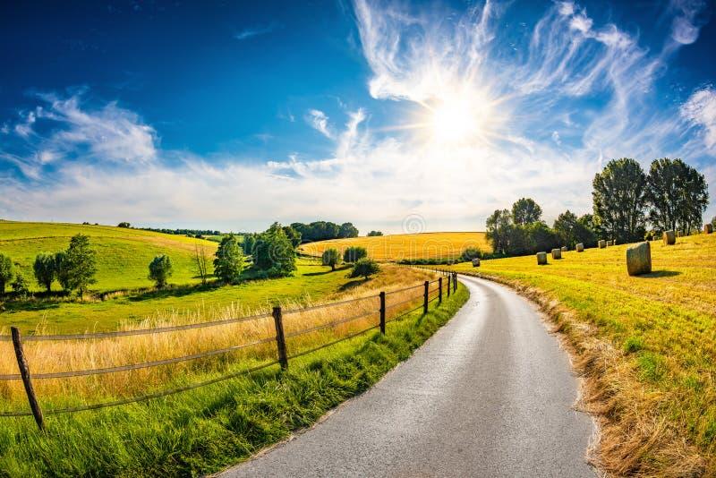 Paisagem bonita do verão em Alemanha foto de stock royalty free