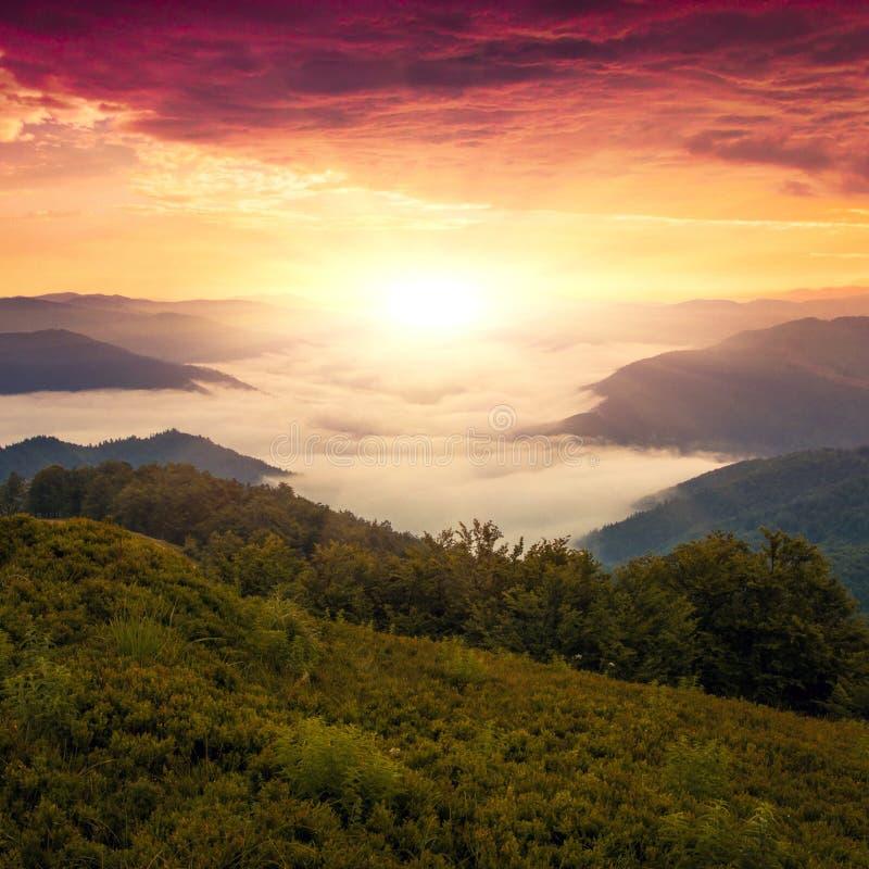 Paisagem bonita do verão, montanhas de Europa, curso de Europa, mundo da beleza fotografia de stock royalty free
