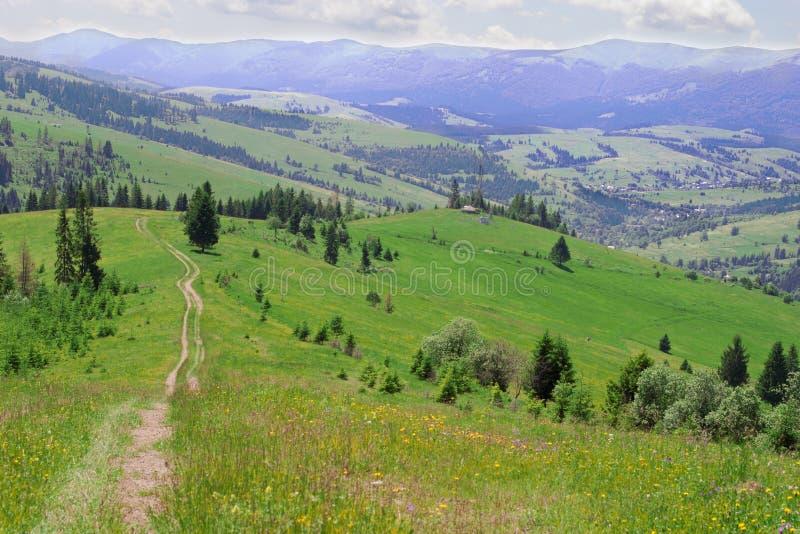 Download Montes da montanha imagem de stock. Imagem de floresta - 29844725