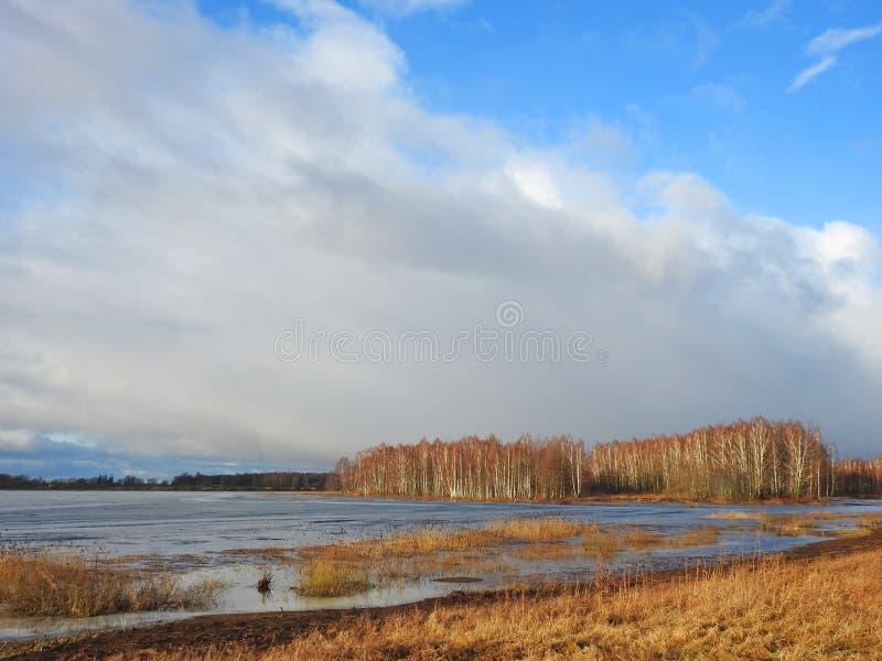 Paisagem bonita e inundação do outono no campo, Lituânia fotografia de stock