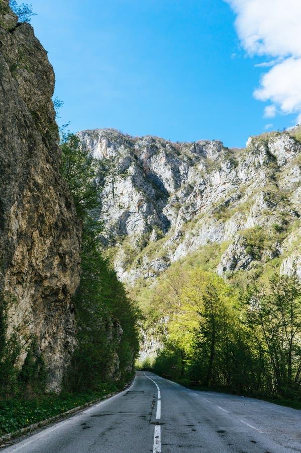 Paisagem bonita em Montenegro com grama fresca e picos bonitos Parque nacional de Durmitor na pe?a de Montenegro de cumes de Dina fotos de stock royalty free