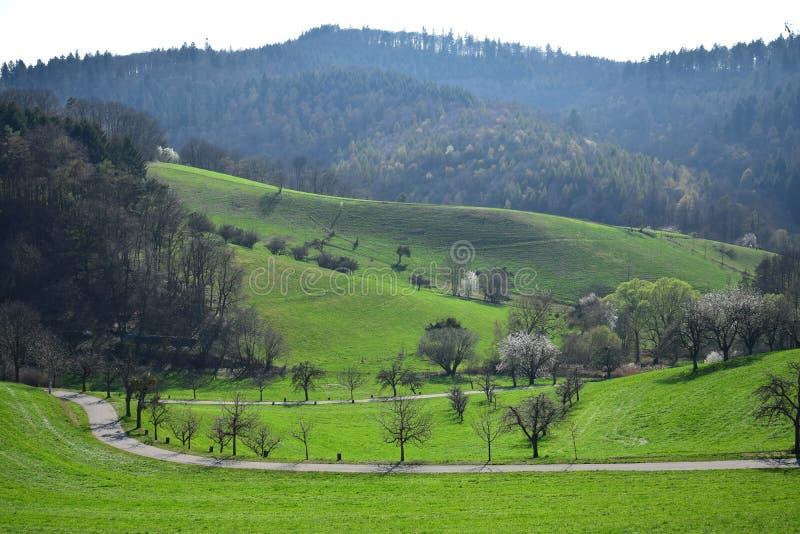 Paisagem bonita na primavera adiantada no Odenwald, Alemanha fotografia de stock