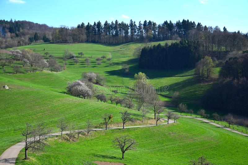 Paisagem bonita na primavera adiantada no Odenwald, Alemanha imagens de stock