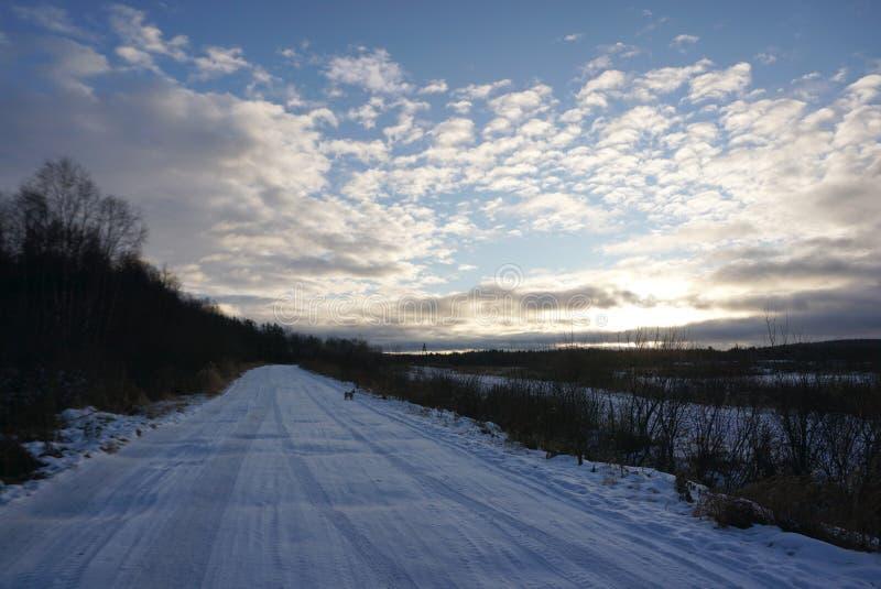 Paisagem bonita na tampa da estrada com neve com céu do por do sol imagens de stock royalty free