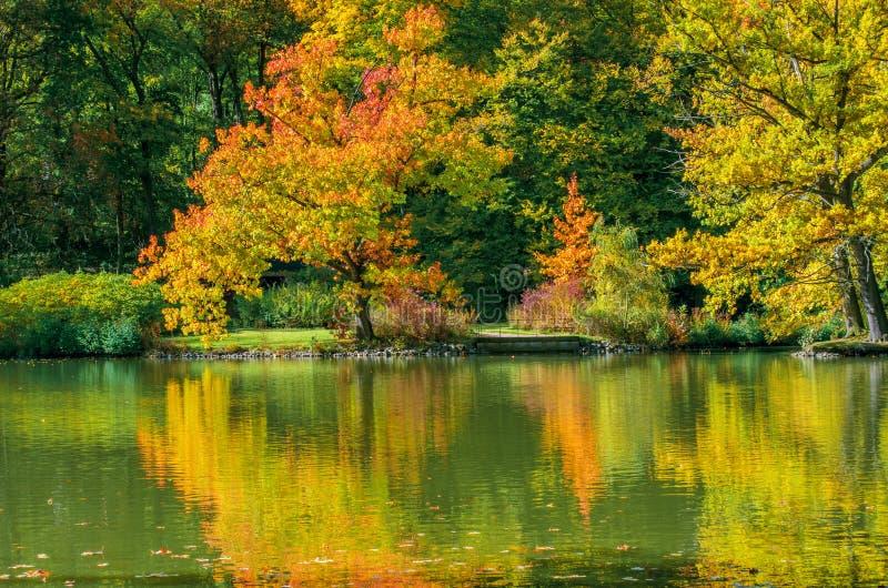 Paisagem bonita no outono foto de stock royalty free