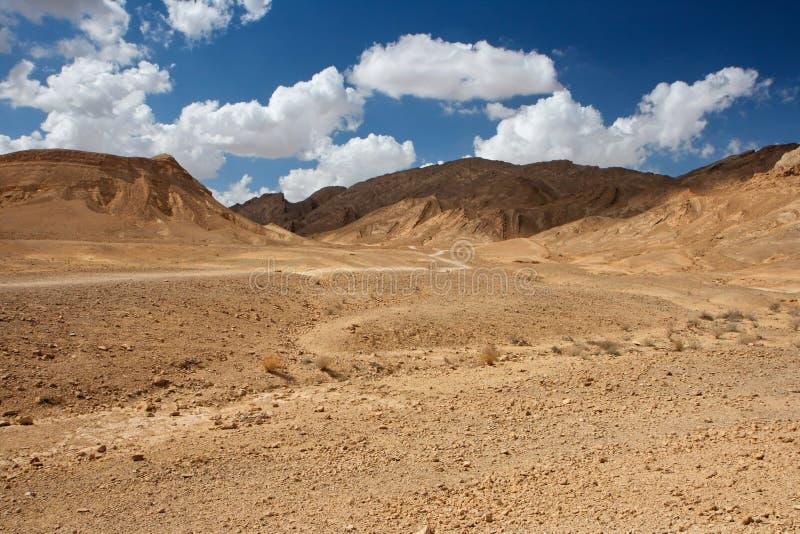 Paisagem cénico do deserto imagem de stock