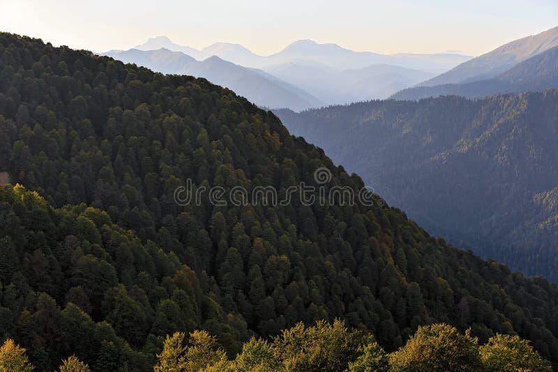 Paisagem cênico bonita do verão de montanhas de Cáucaso no por do sol com floresta e as silhuetas verdes de picos de montanha no imagem de stock