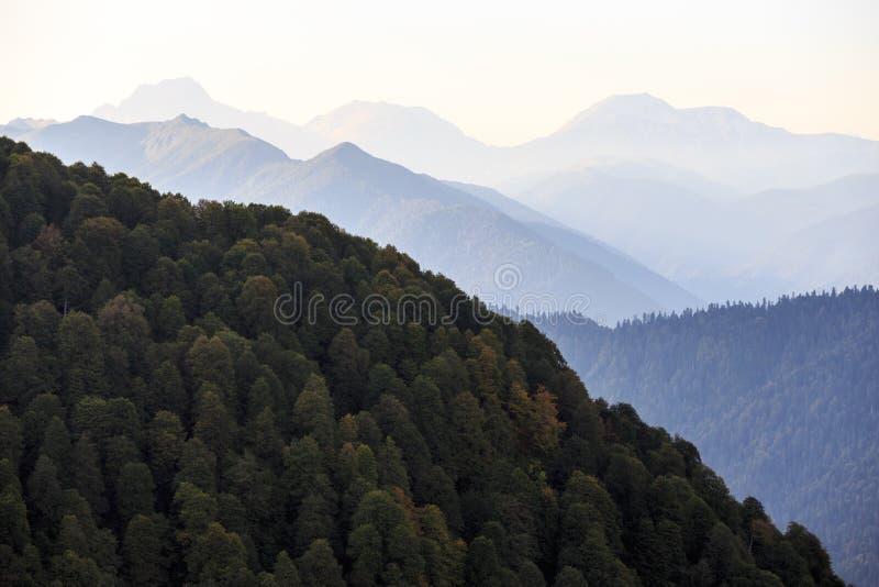 Paisagem cênico bonita do verão de montanhas de Cáucaso no por do sol com floresta e as silhuetas verdes de picos de montanha no fotos de stock