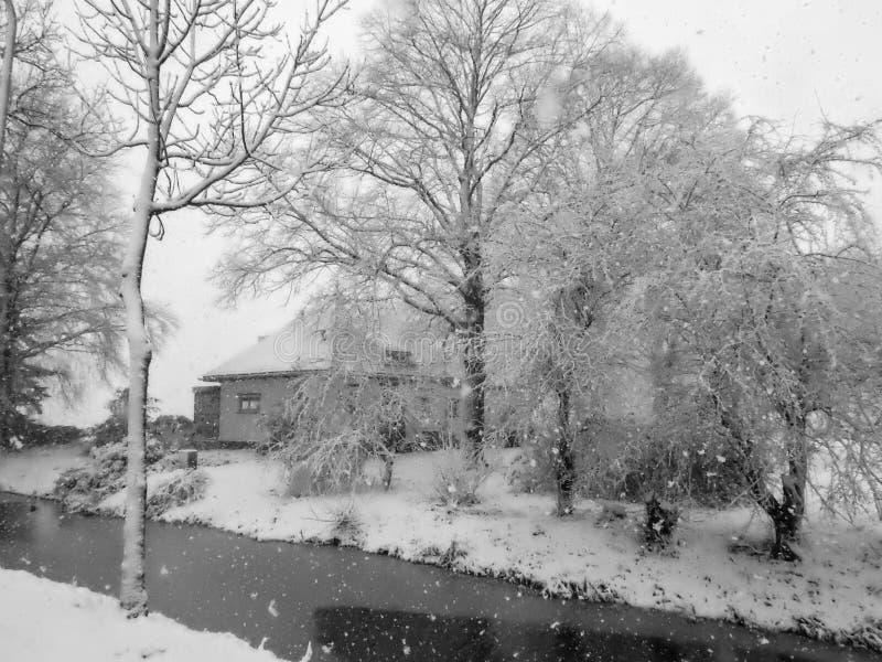Paisagem cênico da neve nos Países Baixos fotos de stock royalty free