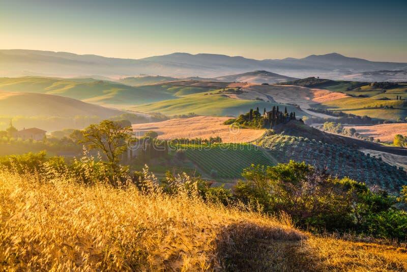 Paisagem cênico de Toscânia no nascer do sol, dOrcia de Val, Itália imagens de stock