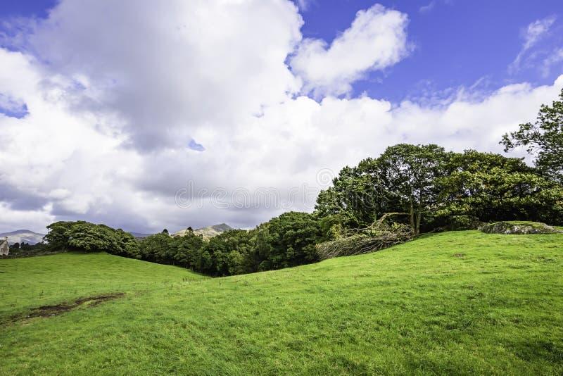 Paisagem cênico do campo britânico rural no distrito do lago, Cumbria, Reino Unido fotos de stock royalty free