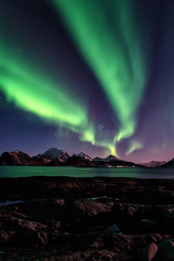 Paisagem cênico do inverno com aurora boreal, aurora borealis no céu noturno, ilhas de Lofoten, Noruega imagens de stock