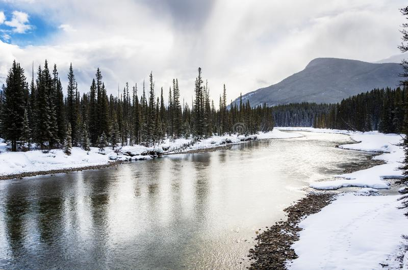 Paisagem cênico do inverno no parque nacional de Banff fotos de stock