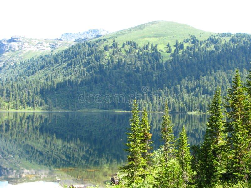 Paisagem cênico do verão de um lago bonito da montanha imagem de stock royalty free