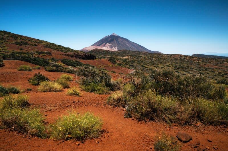 Paisagem cênico no parque nacional de Teide, Tenerife, canário fotos de stock