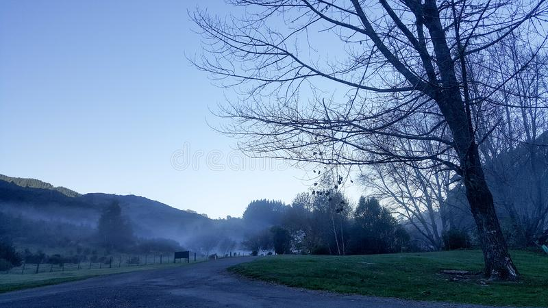 Paisagem calma da manhã enevoada fria imagens de stock