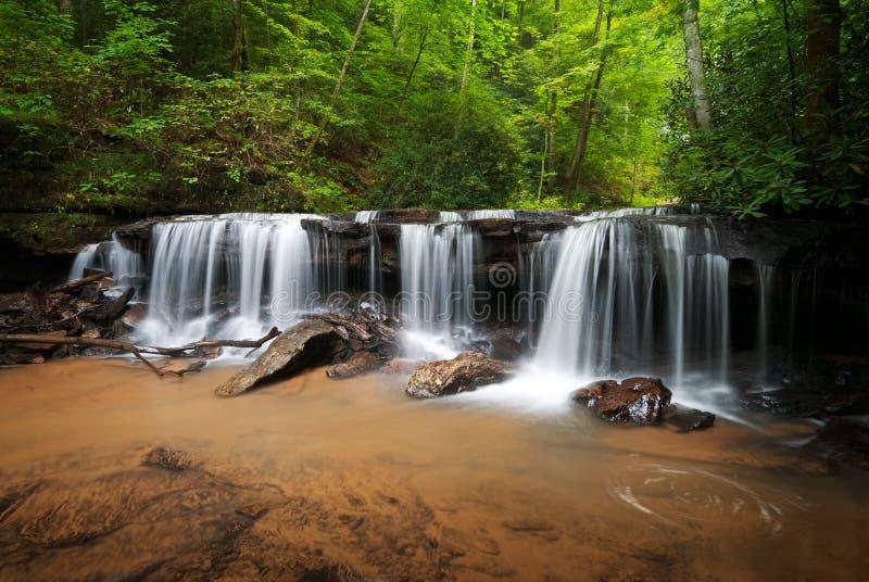 Paisagem calma das cachoeiras da floresta fotografia de stock