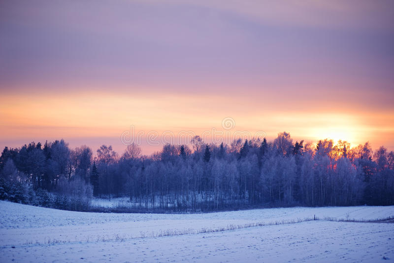 Paisagem calma do inverno no por do sol imagem de stock