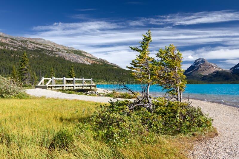 Paisagem canadense. Parque nacional de Banff imagem de stock