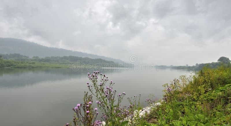 Paisagem chuvosa enevoada do verão no banco do rio imagens de stock