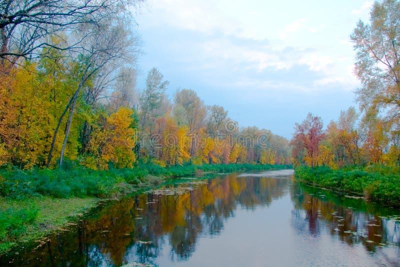 Paisagem colorida do outono do rio e de árvores brilhantes fotografia de stock royalty free