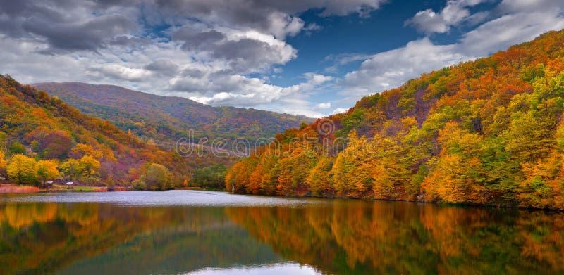 Paisagem colorida do outono nas montanhas foto de stock royalty free