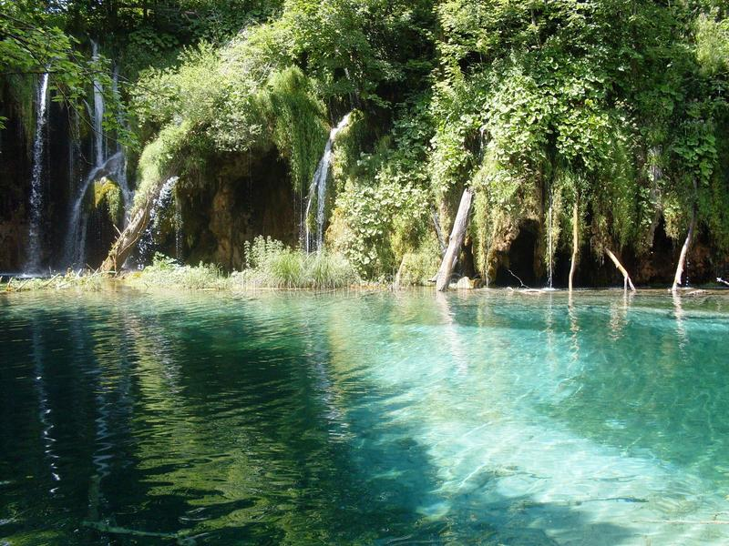 Paisagem colorida e vibrante da costa do lago Paisagem tranquilo útil como o fundo Abaixe a garganta dos lagos Lagos Plitvice nac fotos de stock royalty free