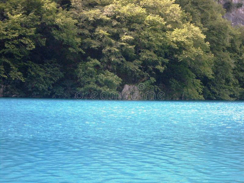 Paisagem colorida e vibrante da costa do lago Paisagem tranquilo útil como o fundo Abaixe a garganta dos lagos Lagos Plitvice nac foto de stock