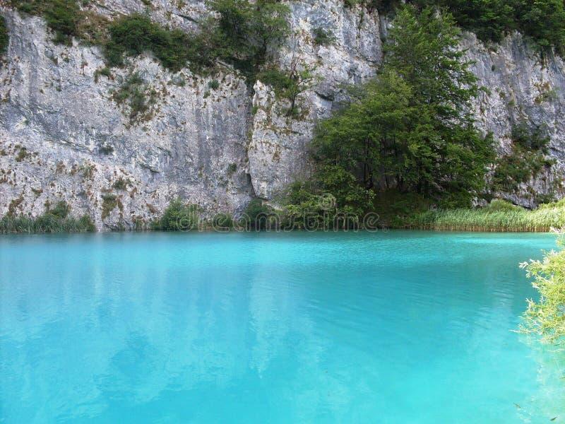 Paisagem colorida e vibrante da costa do lago Paisagem tranquilo útil como o fundo Abaixe a garganta dos lagos Lagos Plitvice nac fotografia de stock royalty free